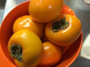 種なし柿だけでなく、富有柿も少しあとに出てきます♪